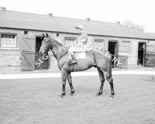 Kilmore with Fred Winter (446-01)